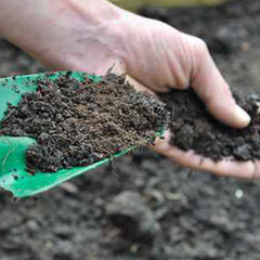 Quality Loam & Soil Conditioner